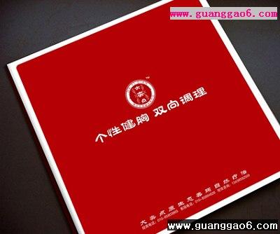 一本美胸项目手册_画册设计_广告设计欣赏 _ 学海网